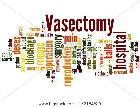 Vasectomy, Word Cloud Concept 4