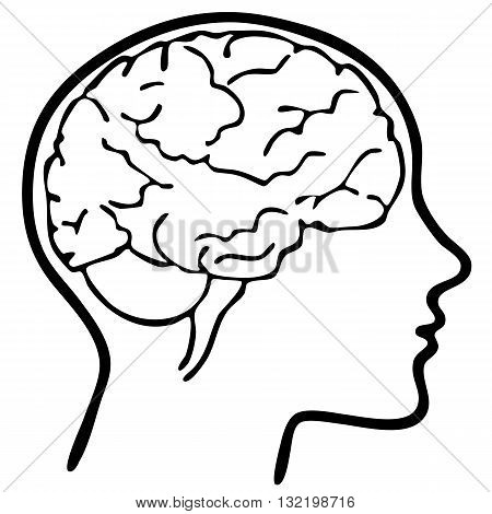 an outline of a brain in head