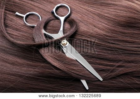 Hairdresser's scissors with dark brown hair, close up