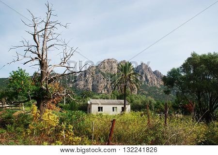 Timeless scenery isolated house on the hills of Corsica Island France