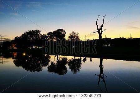 Sunset on the bayou in New Orleans Louisana USA. Relaxing moment observing reflections in the water