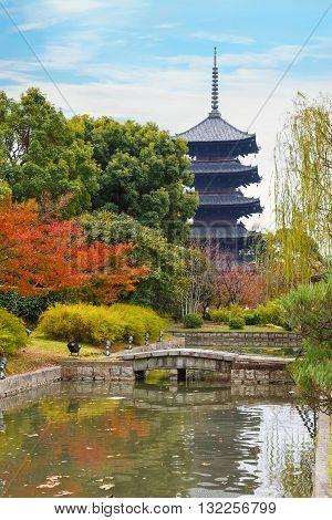 Autumn at Toji Temple in Kyoto Japan