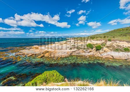 New Zealand colorful coastline landscape with fur seals and birds at Otago Region Southern island New Zealand - full frame and circular polarizing filter