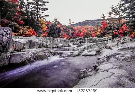 Autumn leaves on swift river in White Mountains of New Hampshire