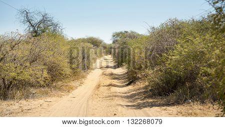 Dirt Road Botswana