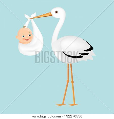 Poster Stork With Baby