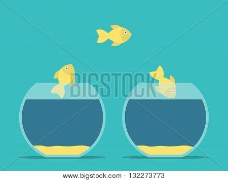Fishes Moving Between Aquariums