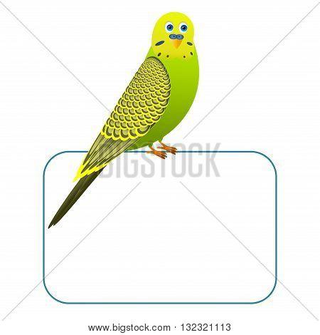 Green cartoon bird on a blank board