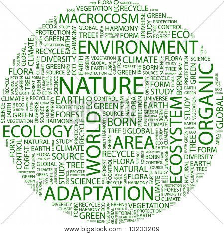 NATURE. Word collage on white background. Vector illustration.
