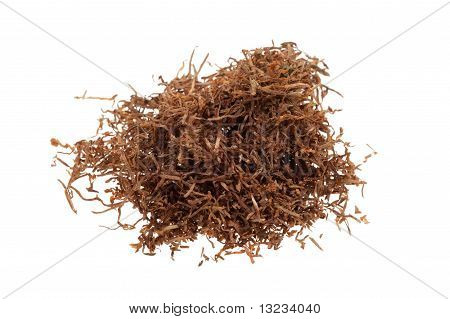 Macro Of Tobacco