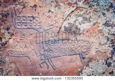 prehistoric drawing on an old spotted stone