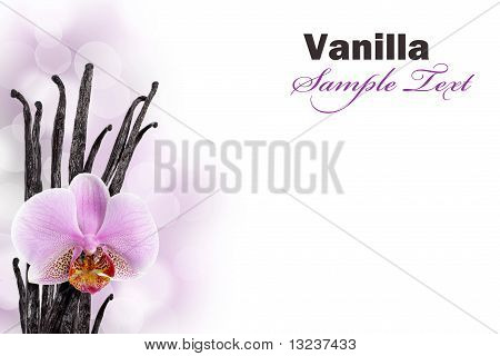 Vanilla beans and orchid flower against bokeh background poster