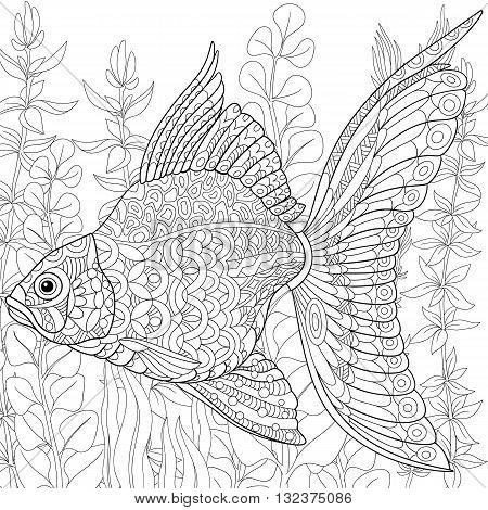 Zentangle stylized cartoon goldfish swimming among seaweed (alga). Hand drawn sketch