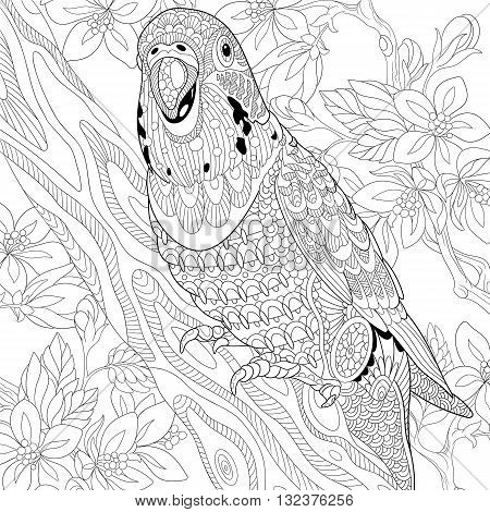 Zentangle stylized cartoon budgie parrot among cherry blossom. Hand drawn sketch for adult antistress coloring page T-shirt emblem logo or tattoo with doodle zentangle floral design elements.