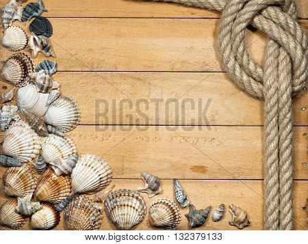 Old knotted rope and many seashells on a wooden background with nails
