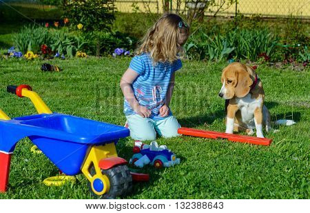 Little girl play with dog in the garden. She play with car and children handcart.