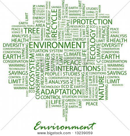 ENVIRONMENT. Word collage on white background. Vector illustration.