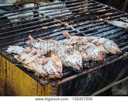 Salted grill fish (Nile tilapia Mango fish Nilotica) on metal kiln Thai food culture