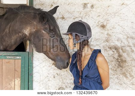 young horsewoman with its horses in the stable