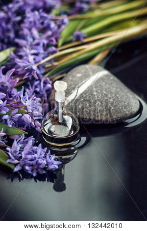 Spa still life with essential oil in glass bottle, spring flowers and stones on dark background. Close up. Beauty treatment. Spa concept. Selective focus.