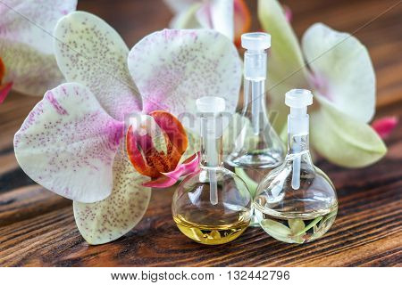 Essential oil in glass bottle with fresh orchid flowers. Beauty treatment. Spa concept. Selective focus.