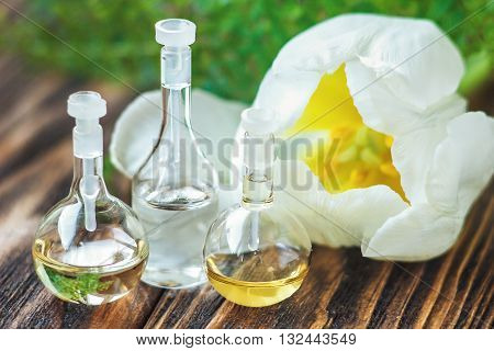 Essential oil in glass bottle with white tulip on wooden background. Beauty treatment. Spa concept. Selective focus.