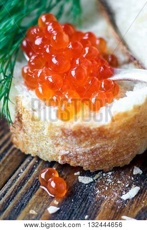 Red caviar in spoon with dill twig and bread on wooden background. Selective focus.