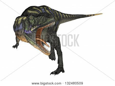 3D Rendering Dinosaur Aucasaurus On White