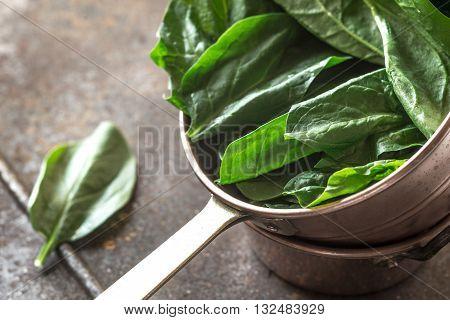 Fresh spinach in the copper pot vitamin, horizontal