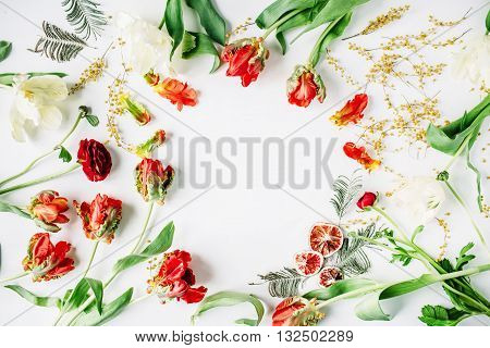 wreath frame with red and white roses ranunculus and tulips acacia oranges isolated on white background. flat lay overhead view