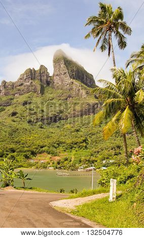 Mount Otemanu wih lagoon and palm trees in Bora Bora French Polynesia