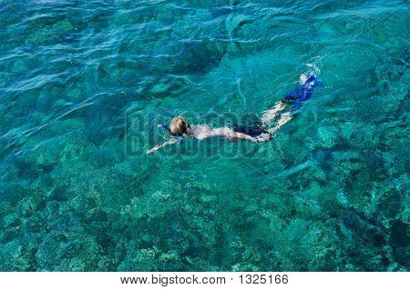 Boy Snorkelling In The Ocean