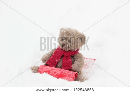 Teddy bears sledding in the winter snow