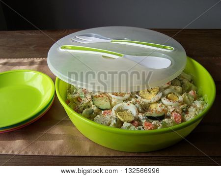 Picnic potato salad with the cover and plates