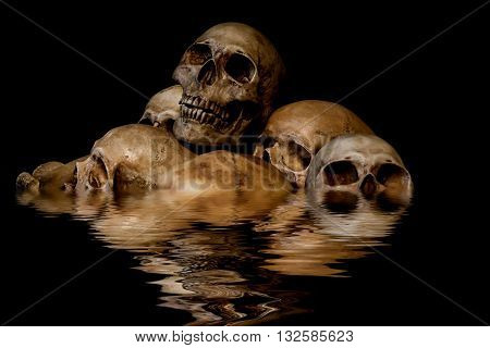 Pile of skulls and animal bones with water reflection. Genocides concept creepy horror darkness halloween