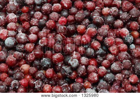 Frozen Berries For Background