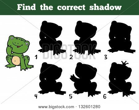 Find The Correct Shadow. Little Frog