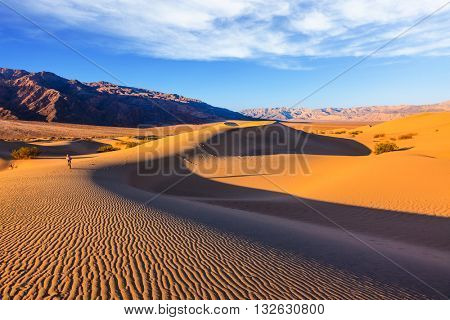 Woman - photographer in a striped T-shirt is among the sand dunes. Sunrise in the orange sands of the desert Mesquite Flat, USA