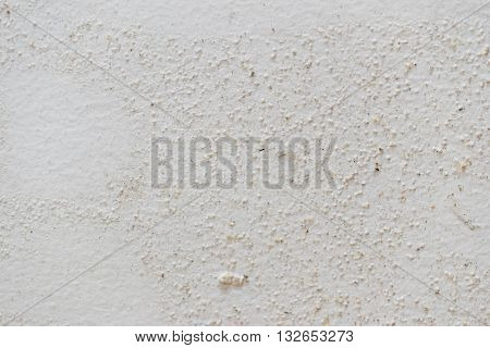 Mold texture on white damped wall background