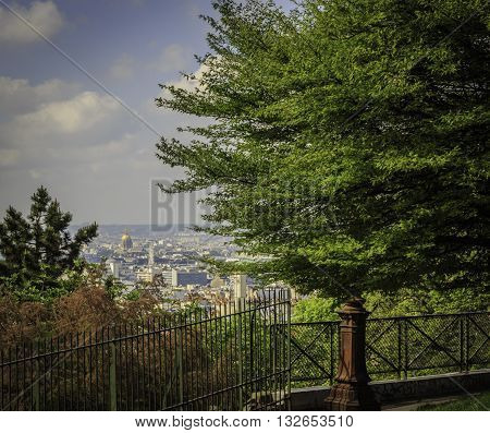 View of Paris Cityscape from Montmartre District - Trees in Foreground