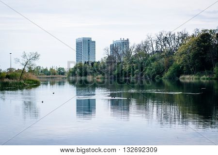 Condominium highrises and Grenadier Pond at High Park in Toronto Ontario. poster