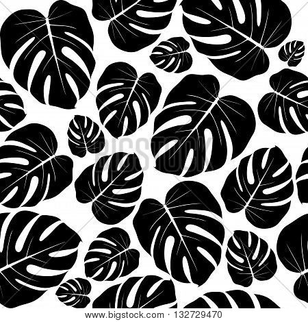 Seamless isolated texture of flat white and black leaves. Monstera