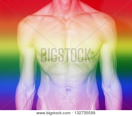 naked muscular male torso with rainbow colors for gay pride