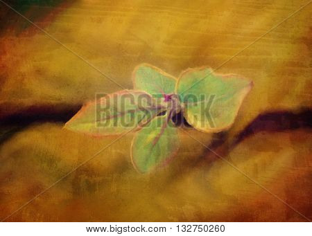 grunge watercolor leaf and branch flat lay close-up view