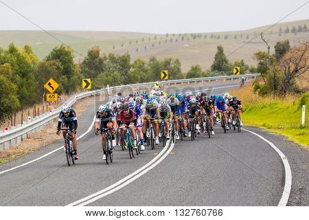 MELBOURNE, AUSTRALIA - FEBRUARY 1: The peloton near the town of Ceres in the Cadel Evans Great Ocean Road race
