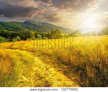 Road Through A Rural Meadow On The Hillside  At Sunset