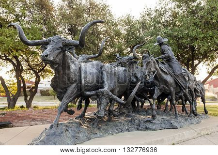 FORT WORTH TX USA - APR 6: T. D. Kelsey's bronze sculpture of a longhorn cattle drive in the Stockyards District of Fort Worth. April 6 2016 in Fort Worth USA