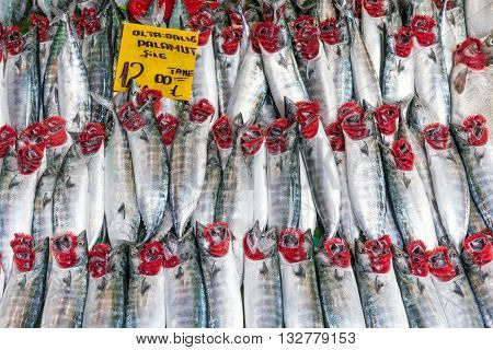 Fresh atlantic bonito for sale at a market in Istanbul
