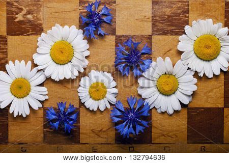 a Abstract flowers chessboard background daisies chess
