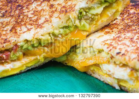 Toasted egg, avocado and cheese sandwich up close